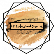 HP Professional Services